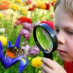 boy_magnifyingglass_900