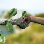 in-hand-with-nature-sustainability-efficiency-and-recycling